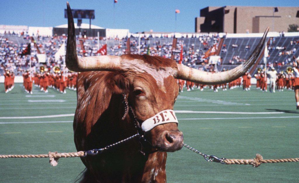 University Of Texas Mascot >> Bevo The Ut History Corner