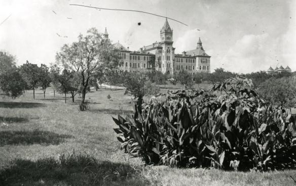 fortyacres1900