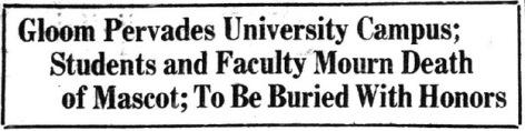 Pig Bellmont.Austin Statesman Headline.Jan 5 1923.