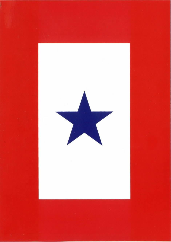blue star service flag - photo #1